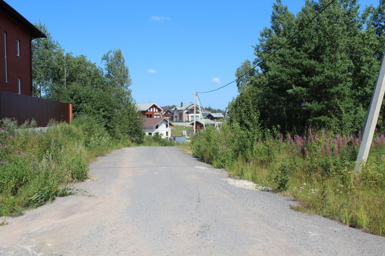 Лето 2019 Коркинские просторы